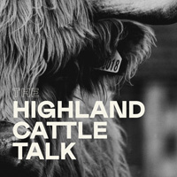 Highland Cattle Talk Logo